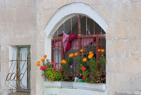 Framed Windows and Flowers in Village, Cappadoccia, Turkey Print