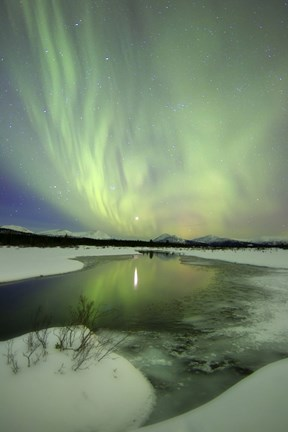 Framed Aurora Borealis over a creek, Yukon, Canada Print