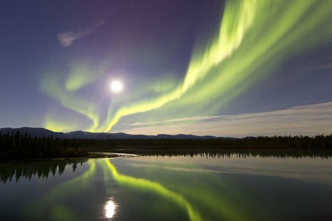 Framed Aurora Borealis and Full Moon over the Yukon River, Canada Print