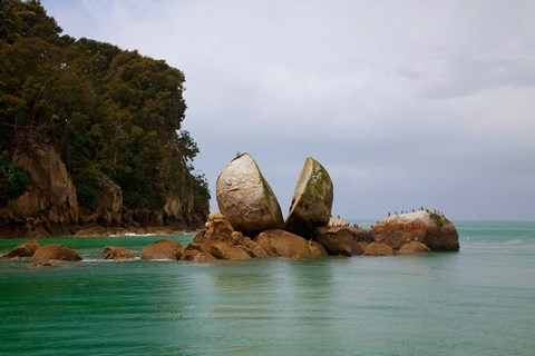 Framed Split Rock, Kaiteriteri Coast, Abel Tasman National Park, South Island, New Zealand Print
