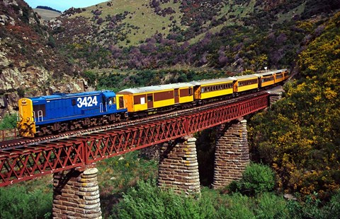 Framed Taieri Gorge Train, near Dunedin, Otago, New Zealand Print