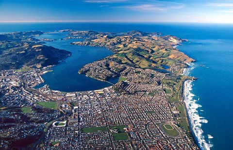 Framed Dunedin, Otago Peninsula Harbor and Pacific Ocean, New Zealand Print