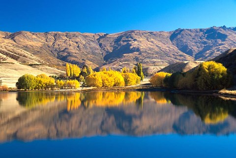 Framed Pisa Range and Lowburn Inlet, Lake Dunstan near Cromwell, Central Otago Print