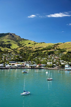 Framed New Zealand, South Island, Canterbury, Akaroa Harbor Print