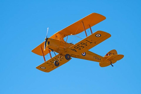 Framed De Havilland DH 82A Tiger Moth Biplane, Warbirds over Wanaka, Airshow, New Zealand Print