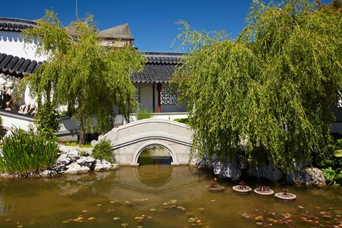 Framed Chinese Gardens, Dunedin, South Island, New Zealand Print