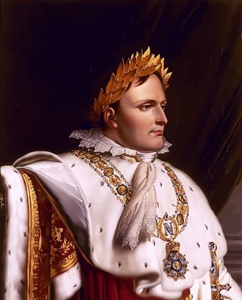 Napoleon Bonaparte Side Profile Fine Art Print By John