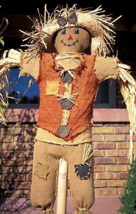 Framed Scarecrow in Suburban Yard at Halloween, Logan, Utah Print