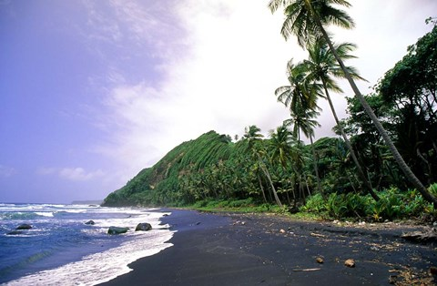Framed Black Sand Beach, Dominica Print
