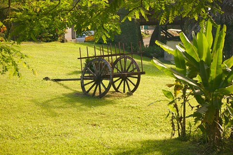 Framed Domaine de Severin Rum Distillery, and Sugar Cane Cart, Guadaloupe, Caribbean Print