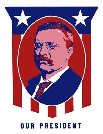 Framed Theodore Roosevelt - Our President Print