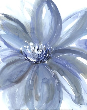 Framed Water Petals Print