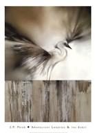 Moonlight Landing & the Egret  Fine Art Print