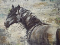 On The Wind  Fine Art Print