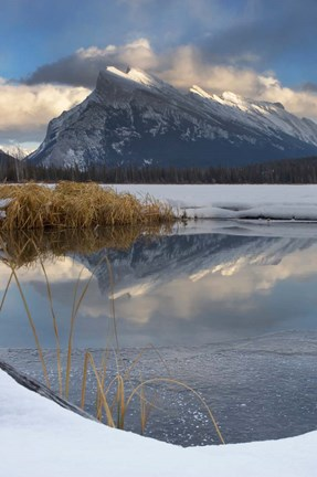 Framed Mount Rundle, Vermillion Lake, Banff NP, Alberta Print