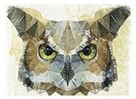 Abstract Owl  Fine Art Print