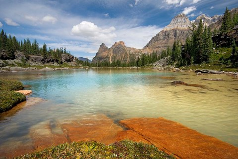 Framed British Columbia, Yoho NP, Opabin Terrace Pools Print
