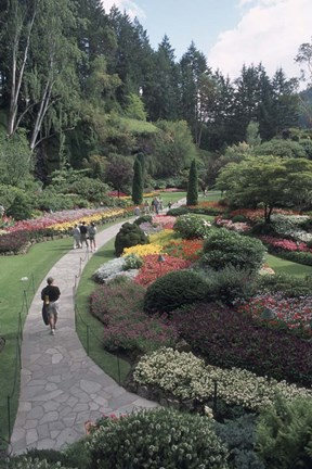 Framed Sunken Garden at Butchart Gardens, Vancouver Island, British Columbia, Canada Print