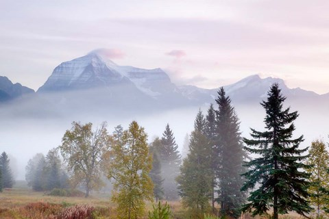Framed Canada, British Columbia, Mount Robson Park Sunrise on mountain Print