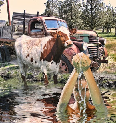 Framed Steer and Old Truck in Terrebonne Print