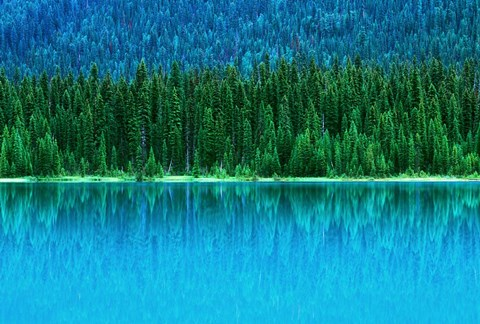 Framed Emerald Lake Boathouse, Yoho National Park, British Columbia, Canada (horizontal) Print