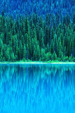 Framed Emerald Lake Boathouse, Yoho National Park, British Columbia, Canada (vertical) Print