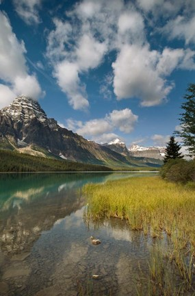 Framed Waterfowl lake, Icefields parkway, Banff NP, Canada Print