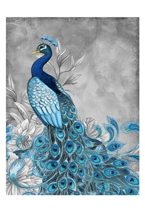 Framed Peacock Beauty 1 Print