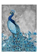Peacock Botanical  1  Fine Art Print