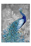 Peacock Botanical 2  Fine Art Print