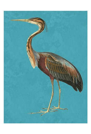 Framed Tall Bird 1 Print