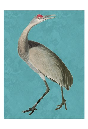 Framed Tall Bird 2 Print