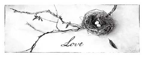 Framed Nest and Branch II Love Print