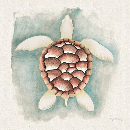 Framed Coastal Mist Sea Turtle Print