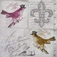 Vintage Birds IV  Fine Art Print
