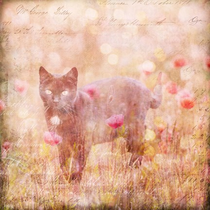 Framed Romantic Cat Print