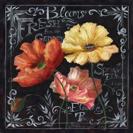 Framed Flowers in Bloom Chalkboard II Print