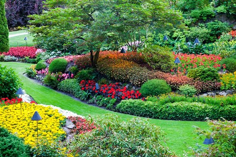 Framed Butchart Gardens in Full Bloom, Victoria, British Columbia, Canada Print