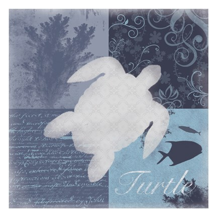 Framed Beach Turtle Print