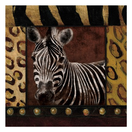 Framed Zebra With Border Print