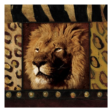 Framed Lion with Wild Border Print