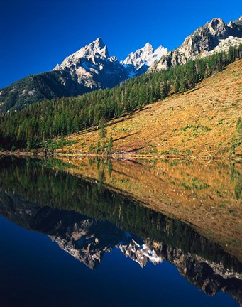 Framed Cathedral group reflecting in String Lake, Grand Teton National Park, Wyoming Print