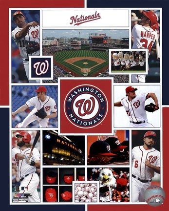 Framed Washington Nationals 2015 Team Composite Print