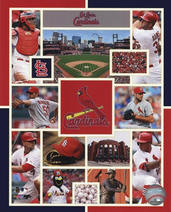 Framed St. Louis Cardinals 2015 Team Composite Print