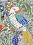 Tropical Cockatoo  Fine Art Print