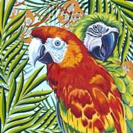 Luau I  Fine Art Print