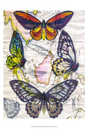 Framed Butterfly Map IV Print