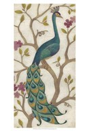Peacock Fresco I  Fine Art Print