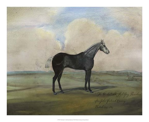 "Framed """"The Kicker,"""" A Steel Grey Racehorse Print"