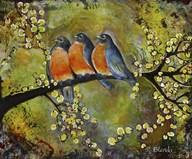 Robin Family  Fine Art Print